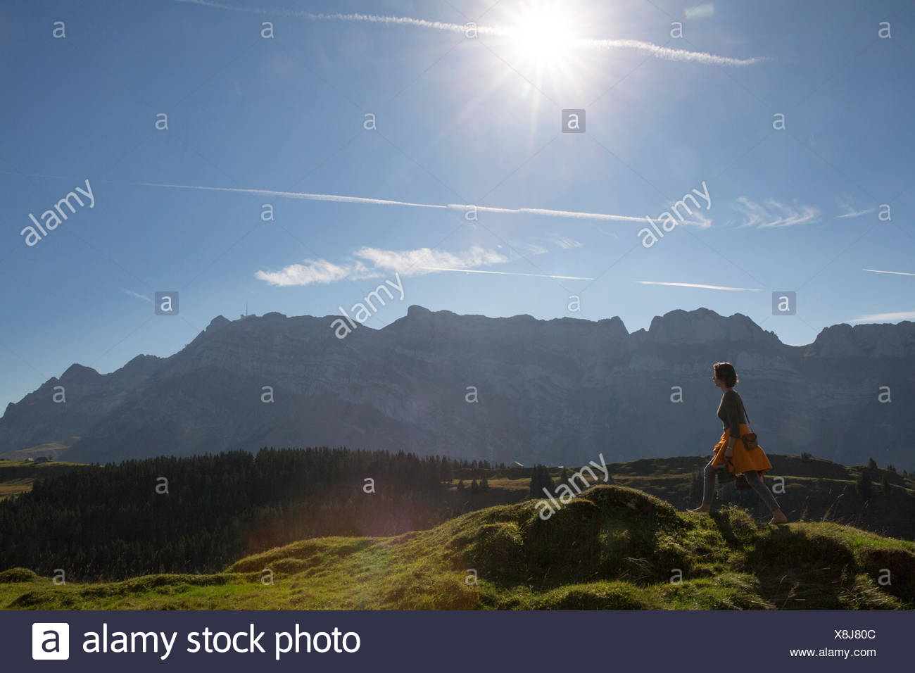 Alpstein, barefooted, walking, Kronberg, mountain, mountains, canton, Appenzell, Innerroden, Alpstein, Säntis, footpath, walking - Stock Image