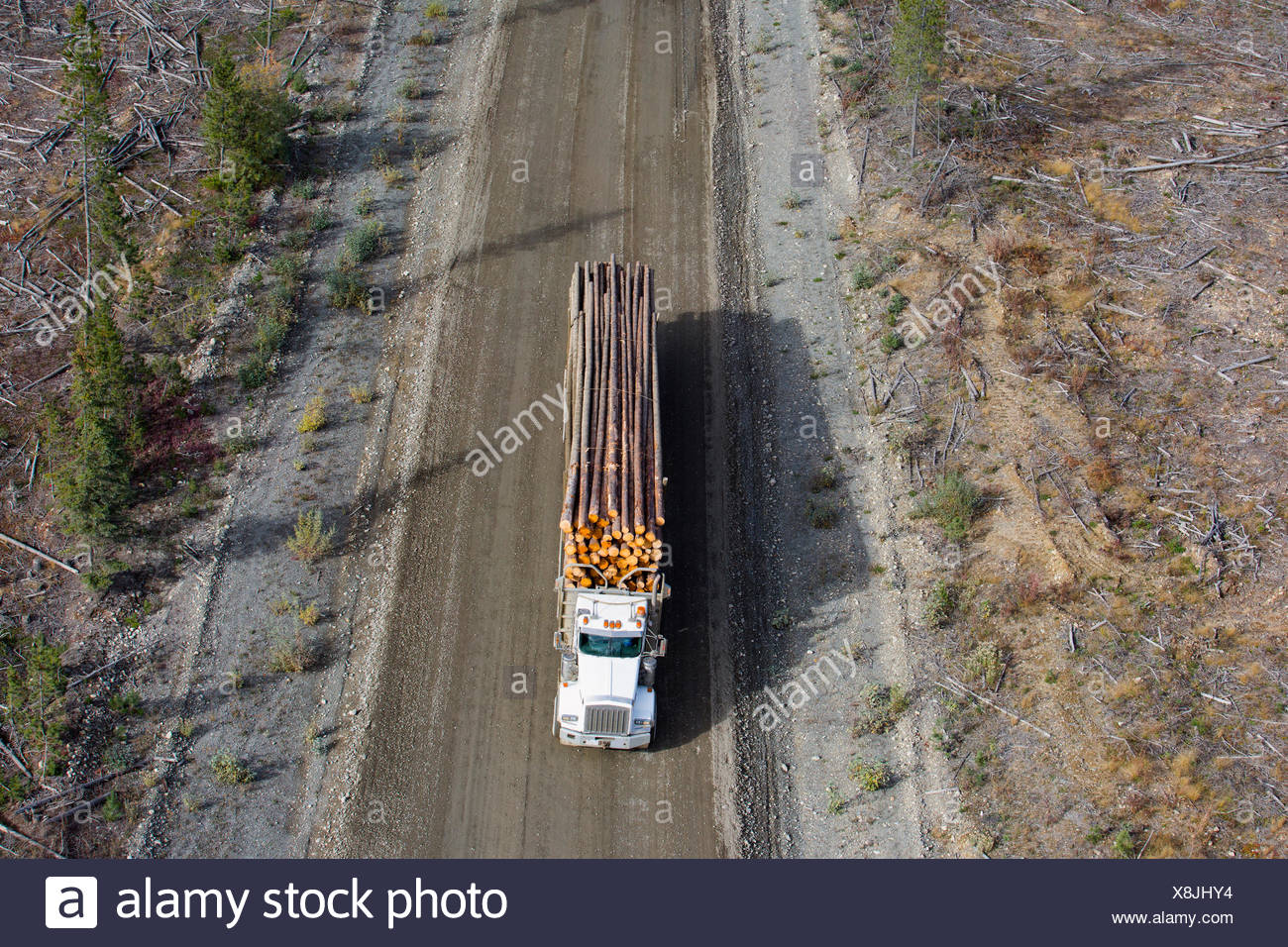 Semi-truck carrying timber on dirt road - Stock Image