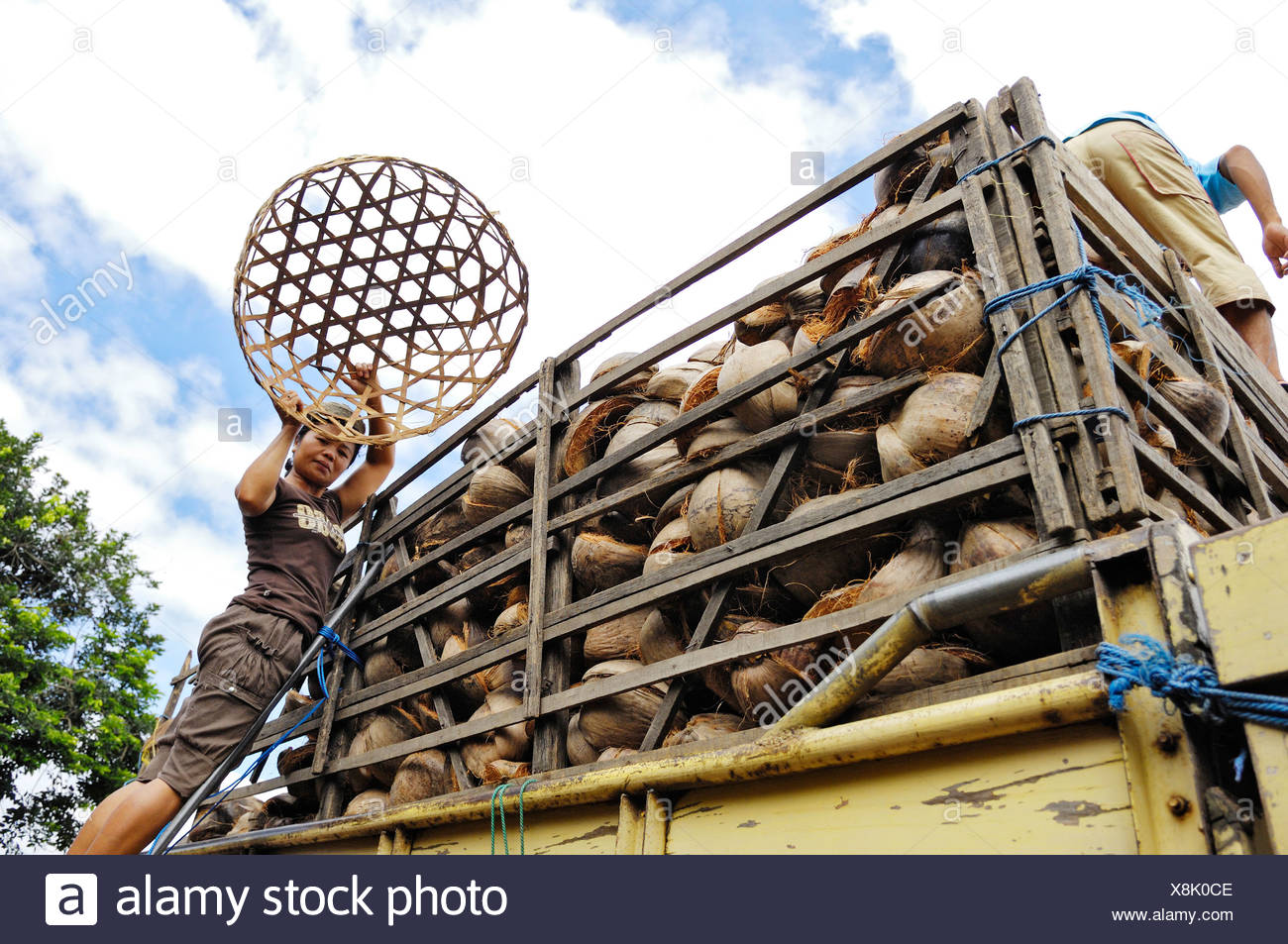 Lorry being loaded with coconut shells, near Rendang, Bali, Indonesia, South East Asia - Stock Image