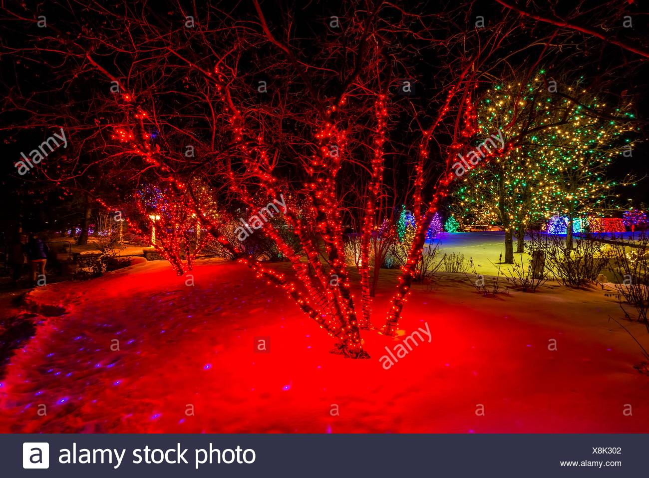 Christmas Show Stock Photos Christmas Show Stock Images Alamy