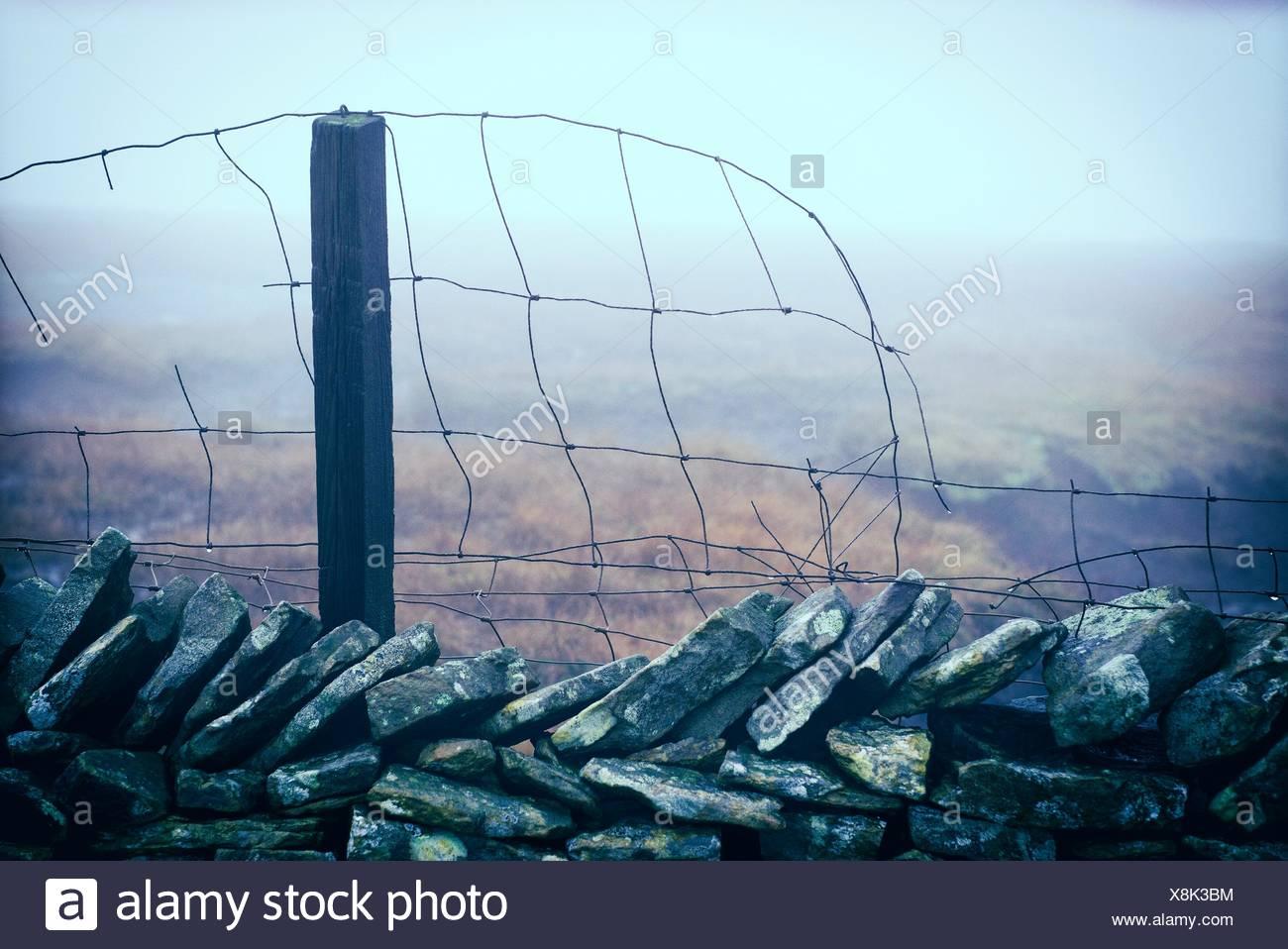 Wire Gauze Stock Photos & Wire Gauze Stock Images - Alamy