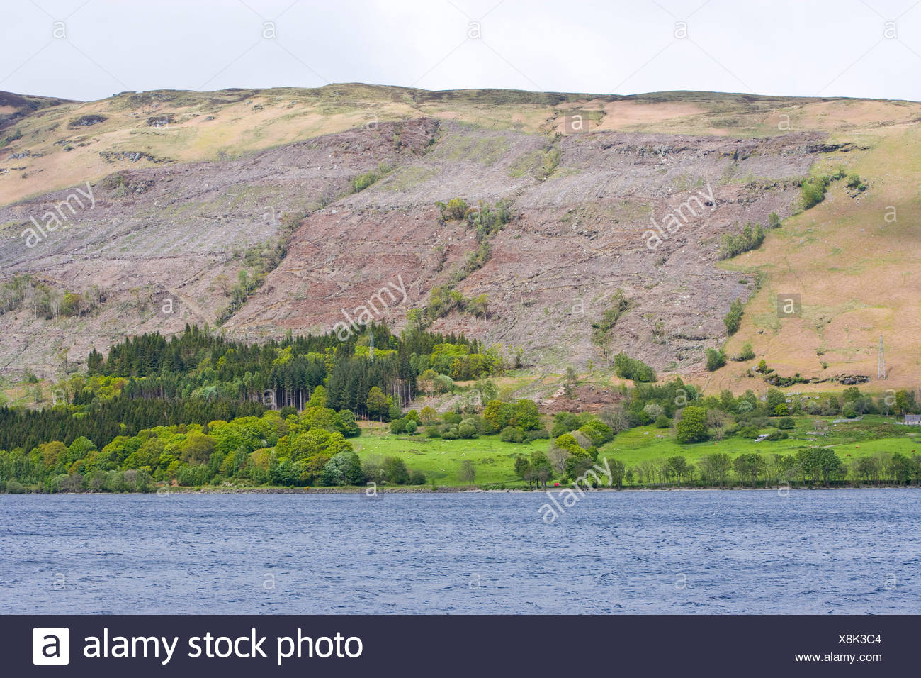 looking over a lake towards felled conifer plantation - Stock Image