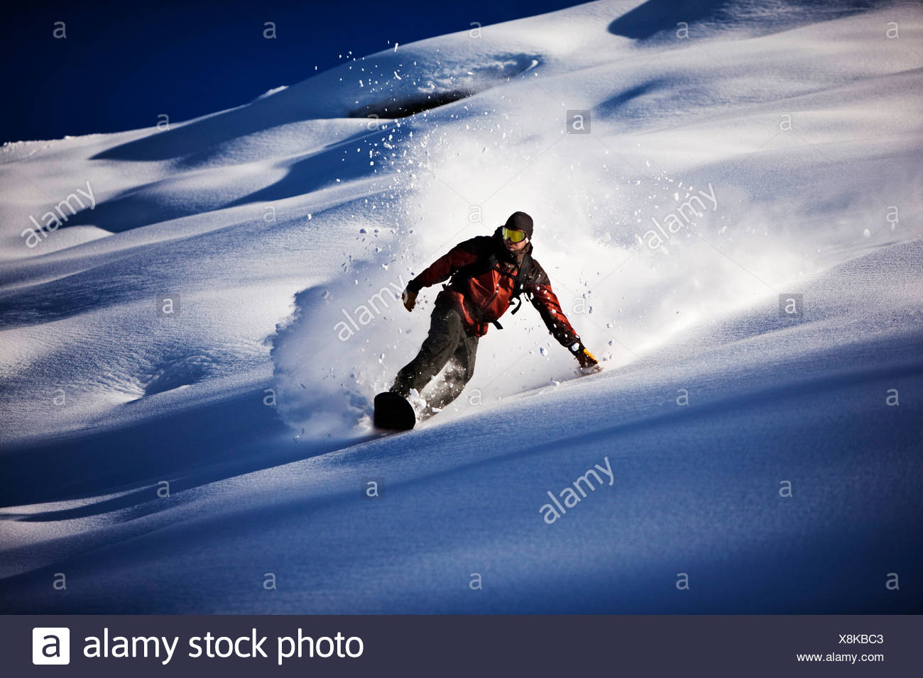 A athletic snowboarder rips fresh powder turns in the backcountry on a sunny day in Colorado. - Stock Image