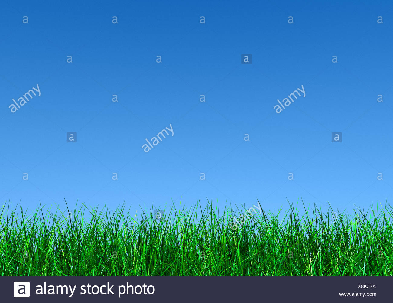 Blue sky over grass - Stock Image