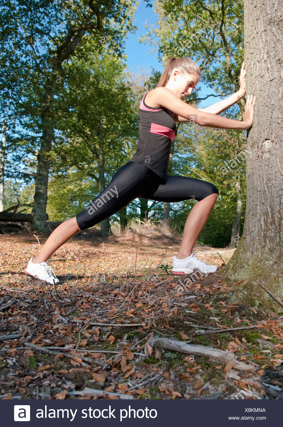 Runner stretching against tree in park - Stock Image
