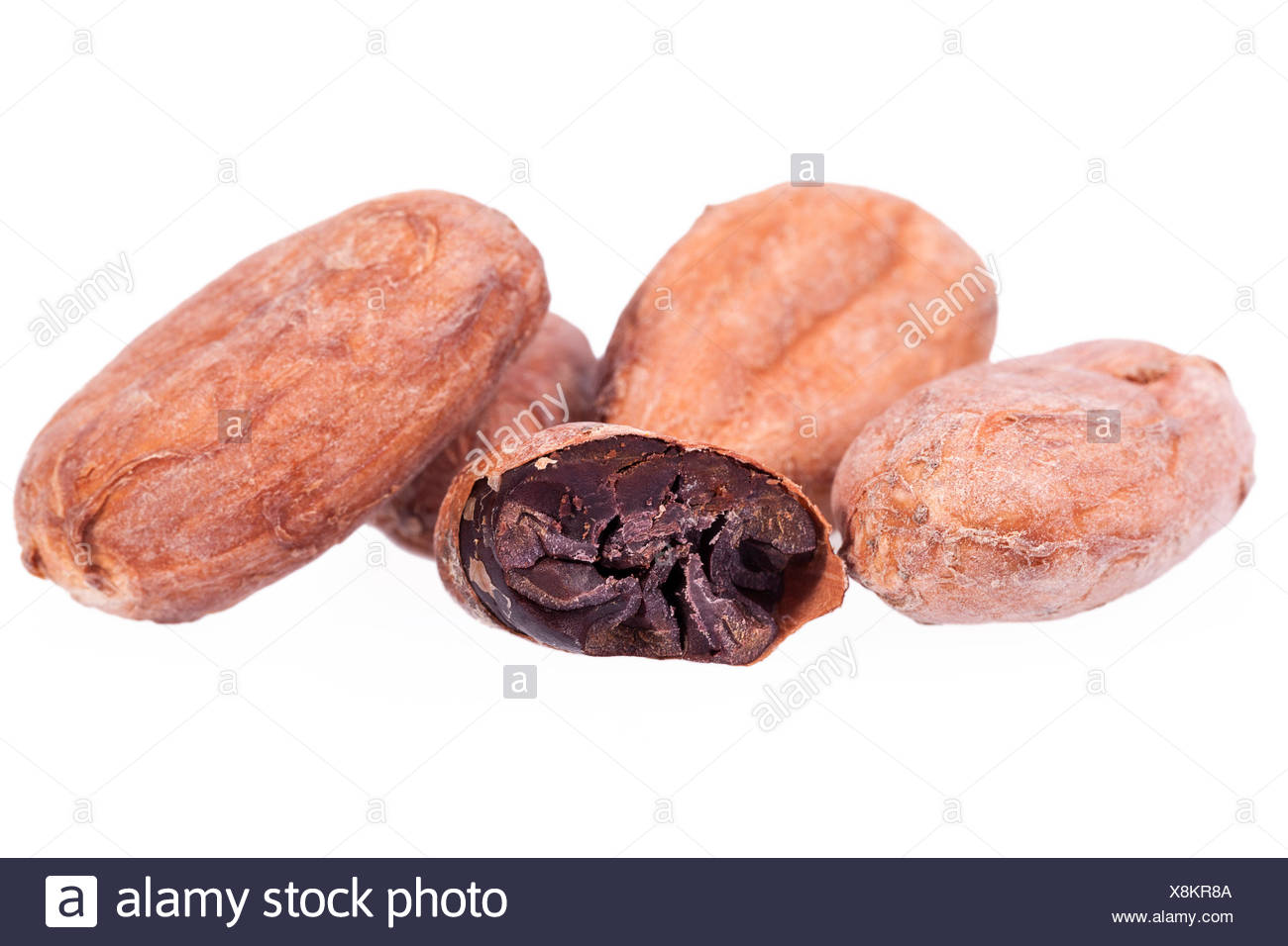 Cocoa beans isolated on white background Stock Photo