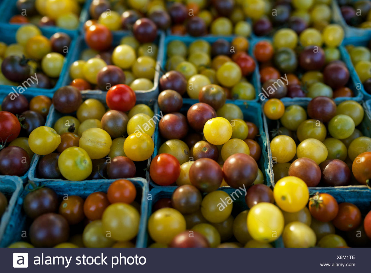 Produce at a farmers market on the Wisconsin Statehouse square in Madison, Wisconsin. - Stock Image