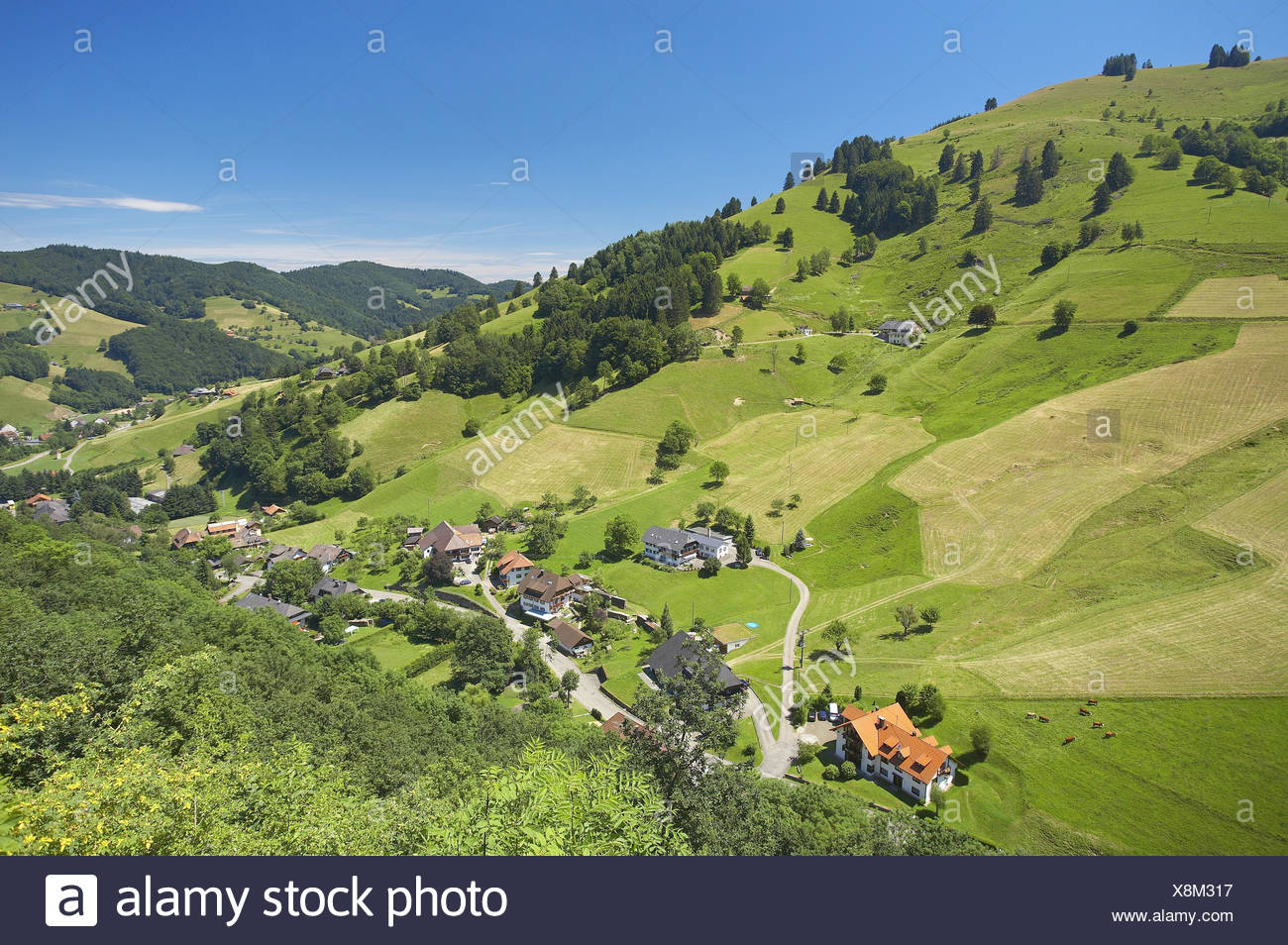 Germany, Baden-Wurttemberg, Black Forest, Cathedral Valley