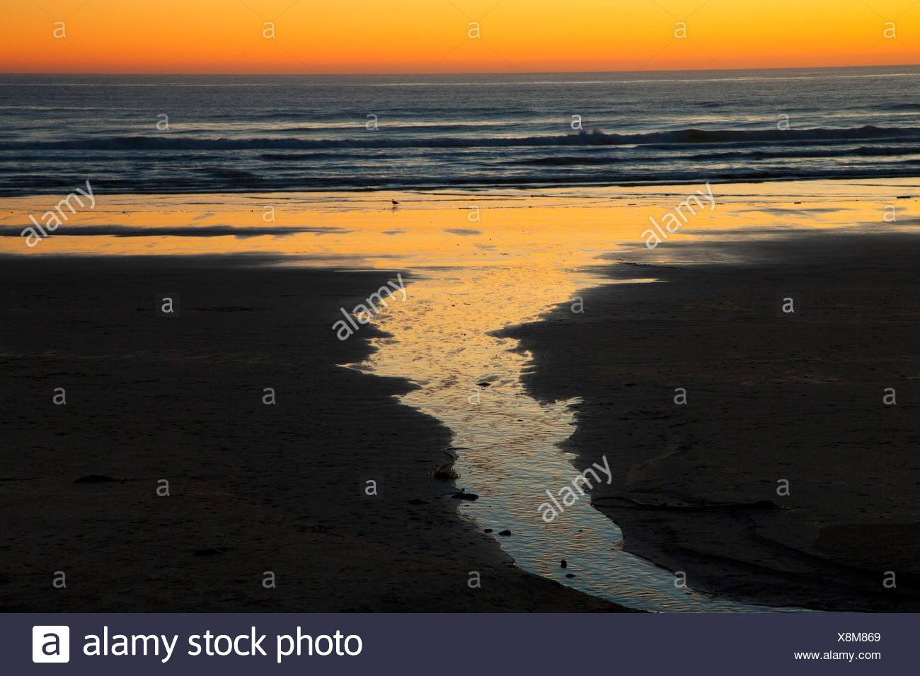 Beach sunset, Cape Lookout State Park, Oregon. - Stock Image