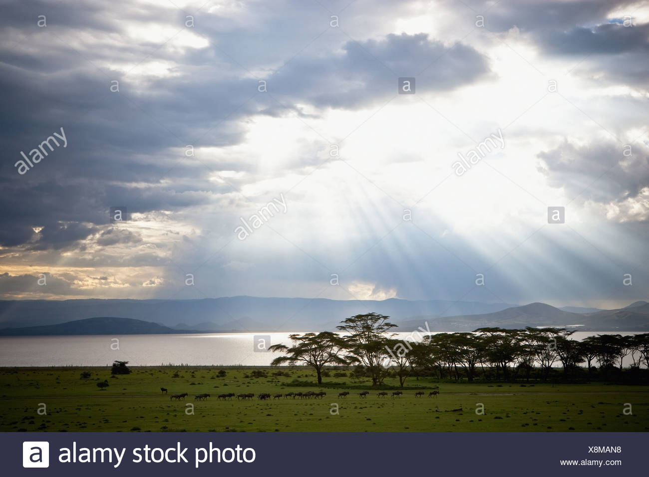 Sunlight Shines Down Through The Clouds Onto A Lake; Kenya - Stock Image