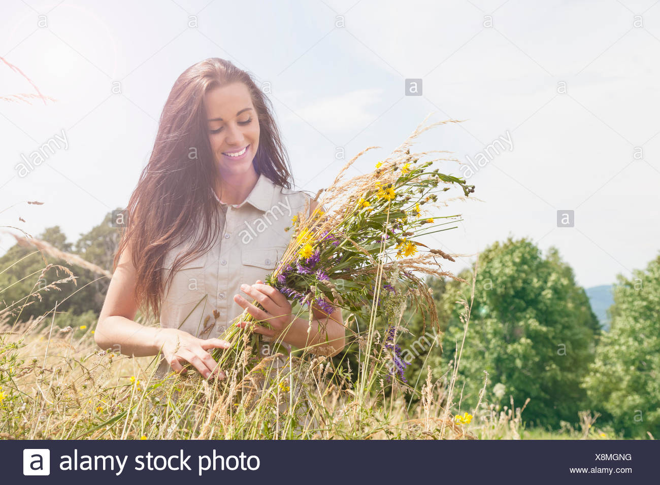 Young woman holding bunch of fresh picked wildflowers in field - Stock Image