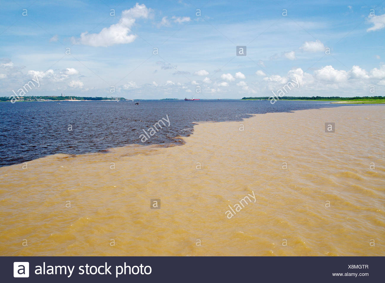 Meeting of Waters, confluence between Rio Negro and Rio Solim�es, Amazon River, Brazil, Manaus - Stock Image