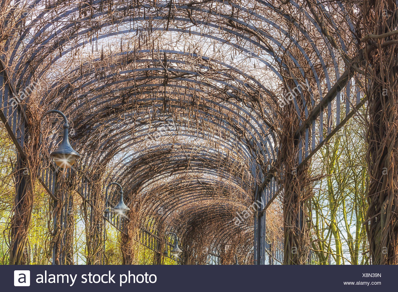 landscaping covered porch. Stock Photo