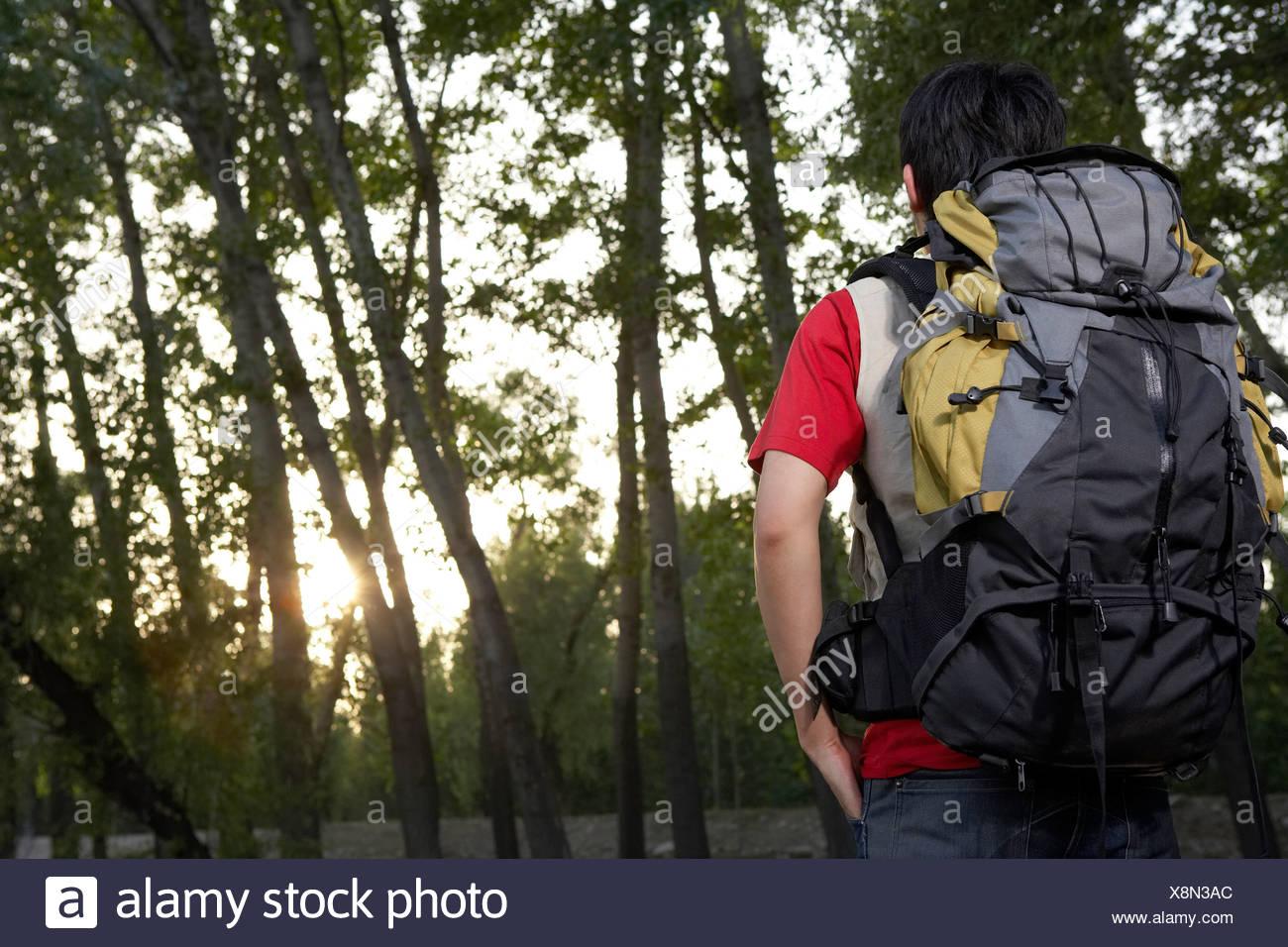 Young Man Walking Through Trees - Stock Image