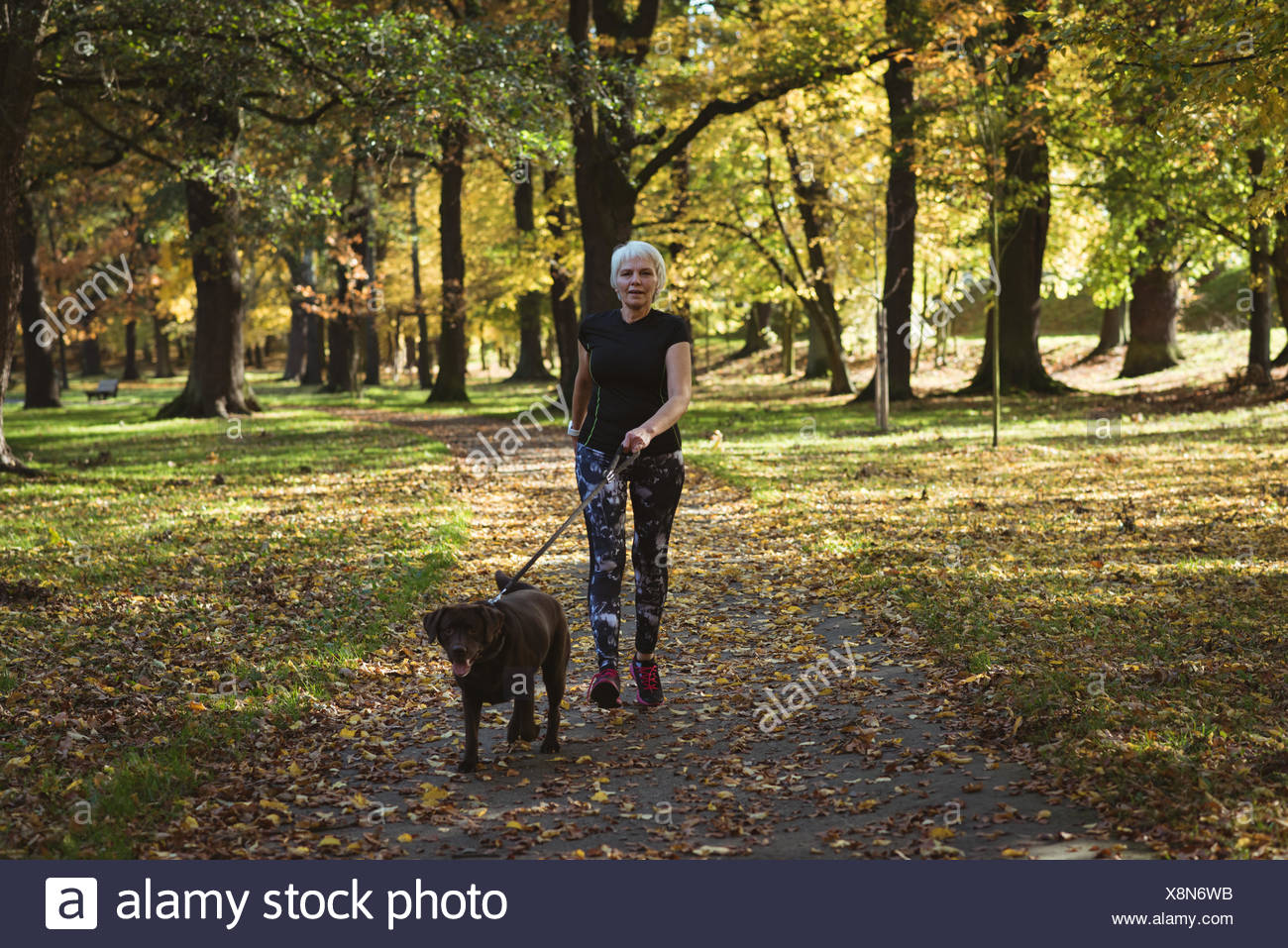 Senior woman walking in the park with her pet dog - Stock Image