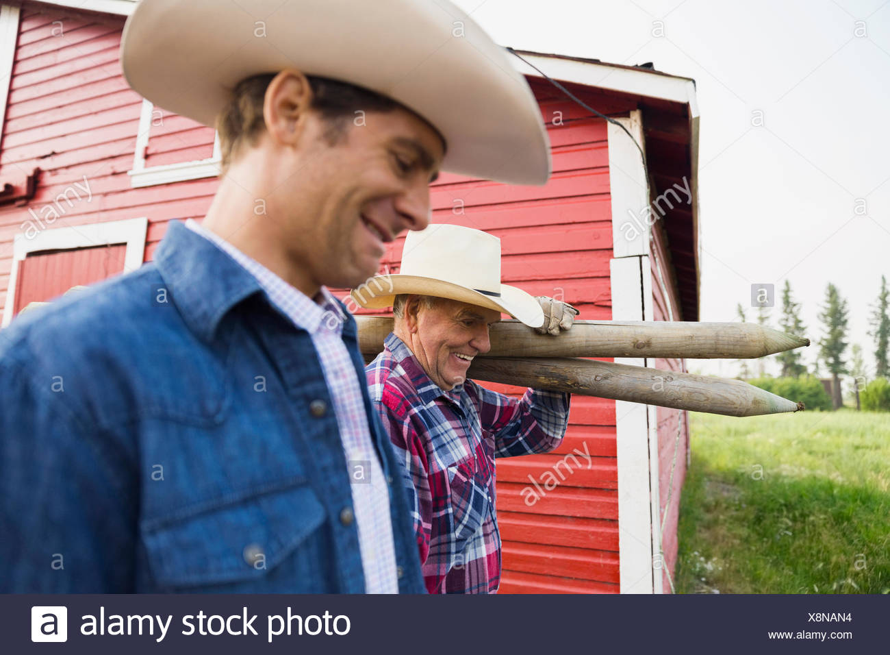 Ranchers carrying fence posts outside barn - Stock Image