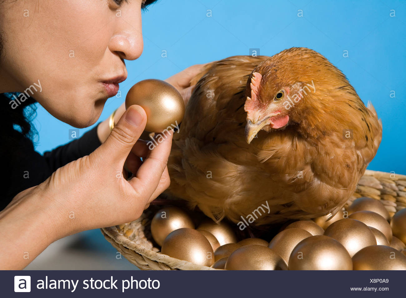 Businessman With Chicken And Golden Eggs Stock Photo