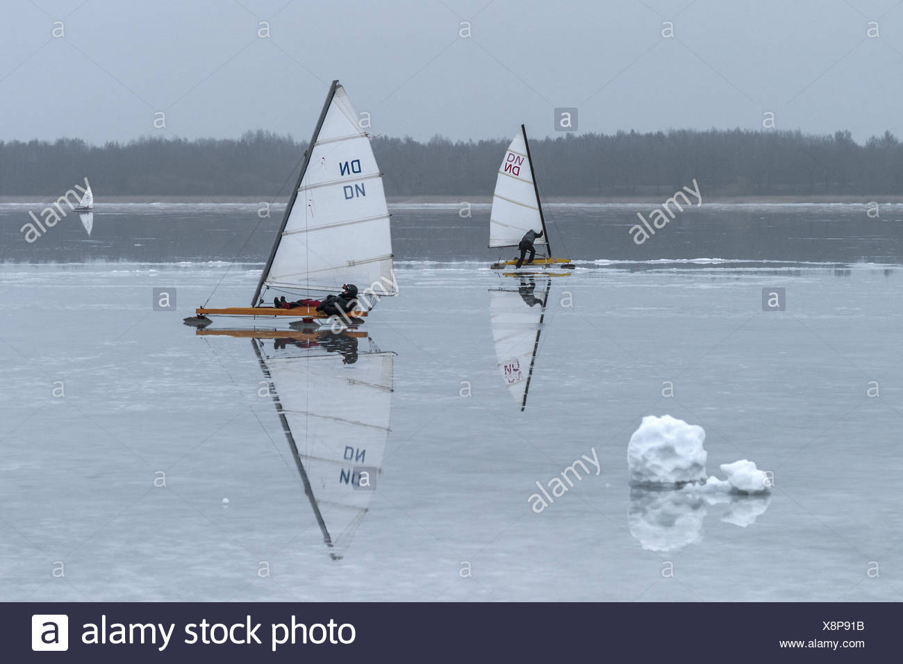 The Baltic Sea - ice yachtsman on the Bodden - Stock Image