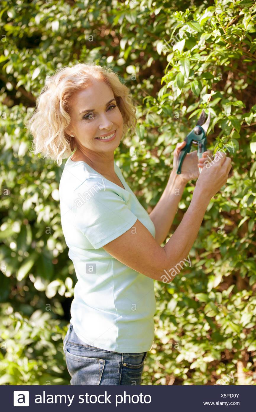 A mature woman pruning a bush - Stock Image