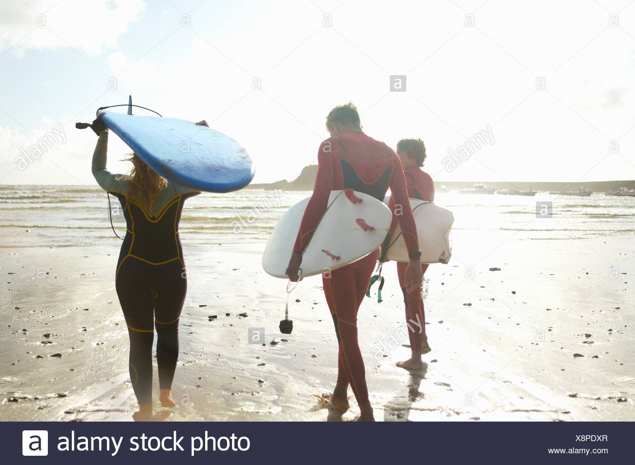 Group of surfers heading towards sea, carrying surfboards, rear view - Stock Image