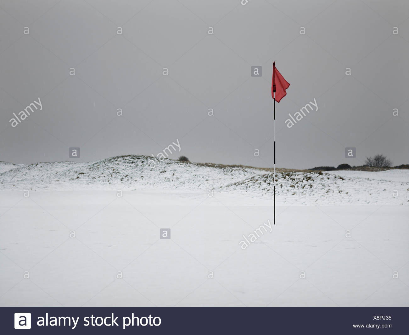 Golf flagpole on snow covered course - Stock Image
