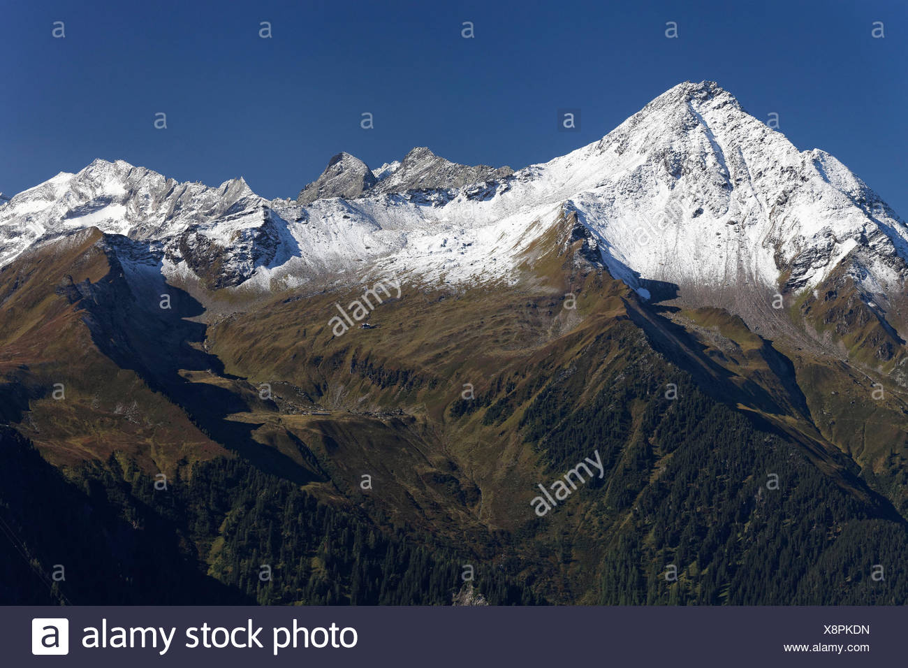 View to the alpine scenery of the Penken to the Ahornmassiv (massif) and Stillupgrund in the high alps nature park of Zillertal alps, Austria Stock Photo