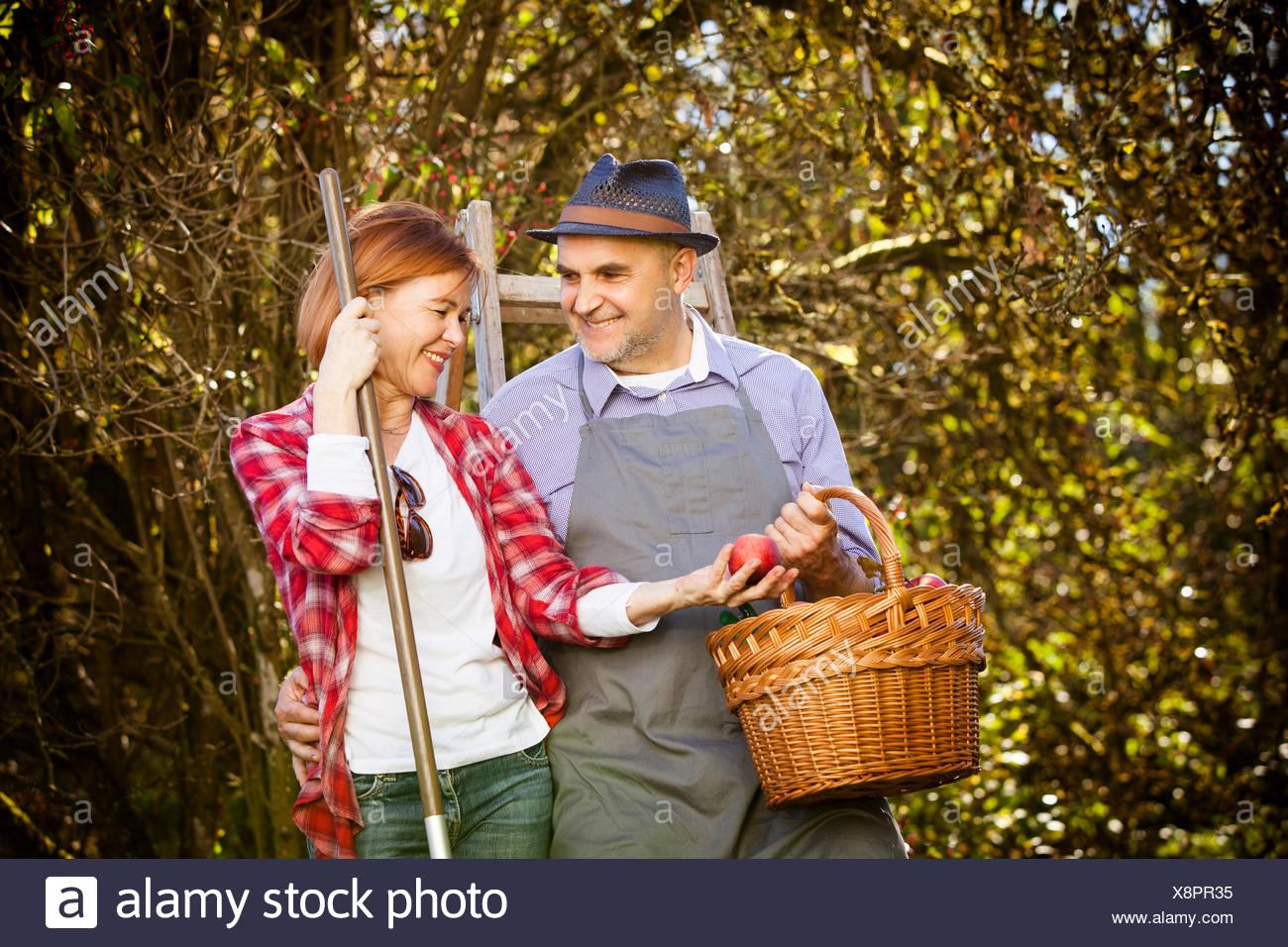 Family picking apples, Munich, Bavaria, Germany Stock Photo