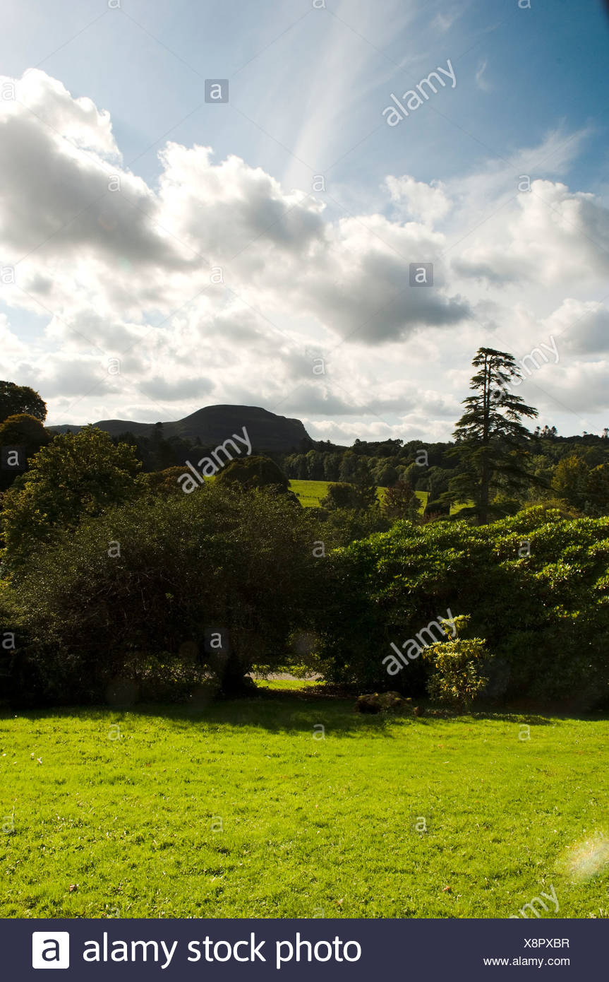 Northern Ireland, Fermanagh, Lakelands, view over Florence Court Parkland - Stock Image