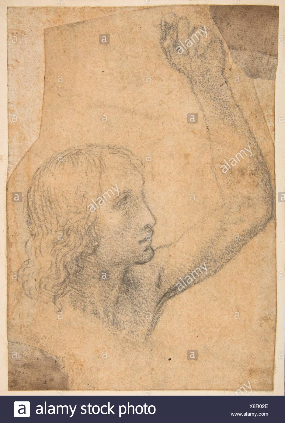 Youth with Right Arm Raised in a Shoulder-Length Portrayal (preparatory study for St. Sebastian). Artist: Timoteo Viti (Italian, Urbino 1469-1523 - Stock Image