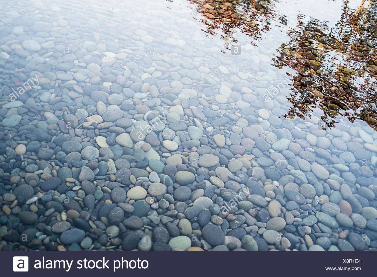Pebbles On A River Bed. Reflections And Ripples On The Surface.   Stock  Image