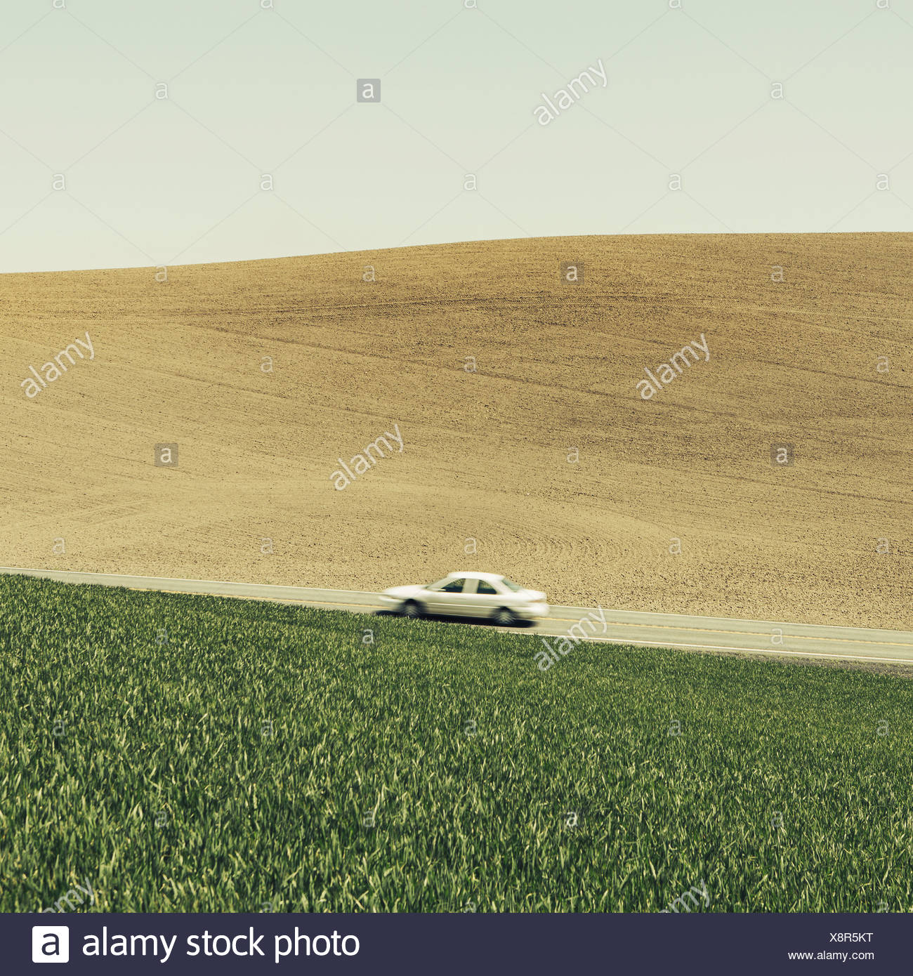 A car driving on am uphill slope surrounded by farmland and lush green fields of wheat near Pullman Washington - Stock Image