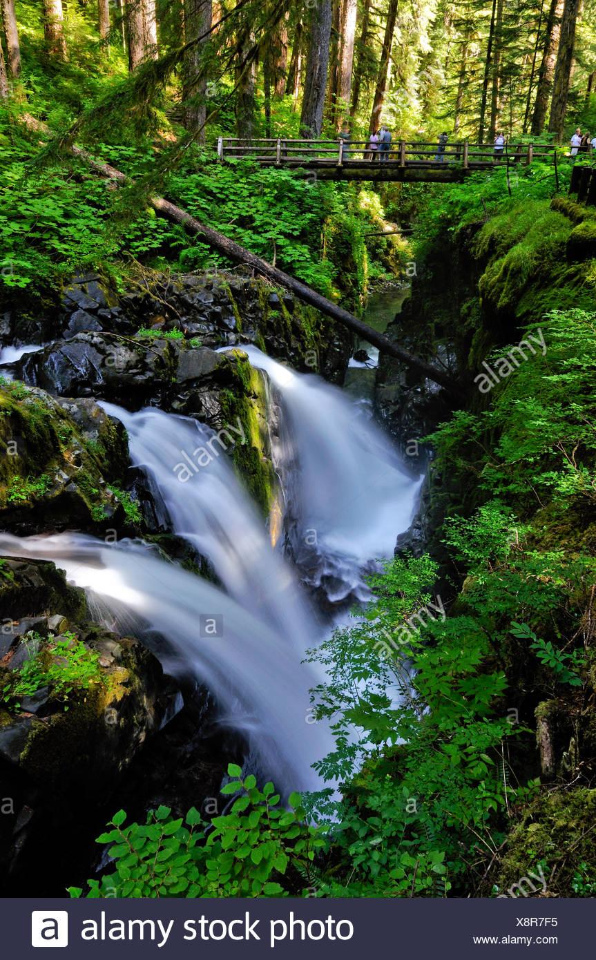 Sole Duc Falls, waterfall, tourist attraction, Olympic Peninsula, Nationalpark, Washington, USA, North America - Stock Image