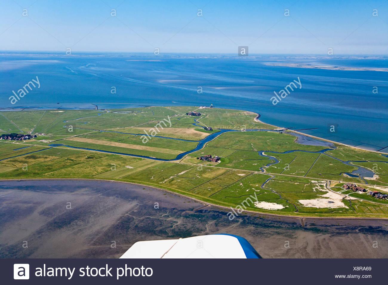 Aerial shot of Hooge hallig, North Frisian Islands, Schleswig-Holstein, Germany - Stock Image