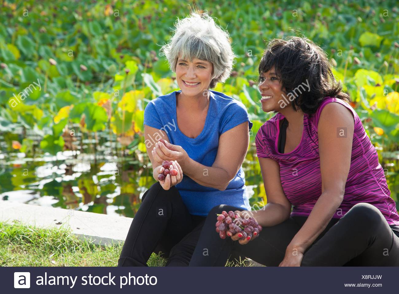 Mature female friends sitting in park, eating grapes - Stock Image