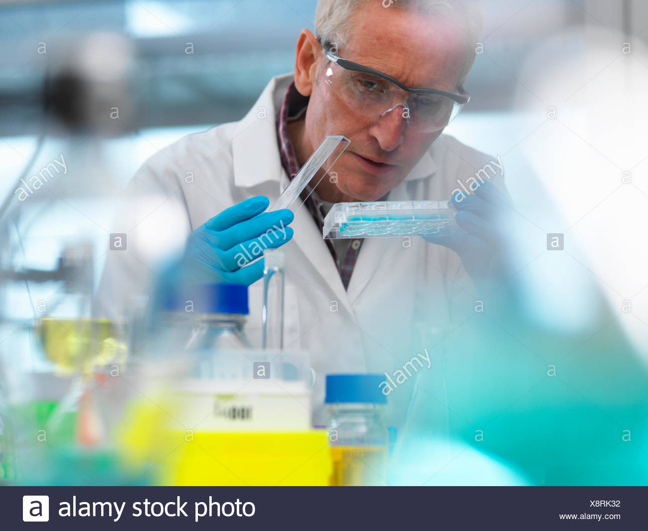 Biotechnology Research, scientist viewing samples in a multi well plate during an experiment in the laboratory - Stock Image