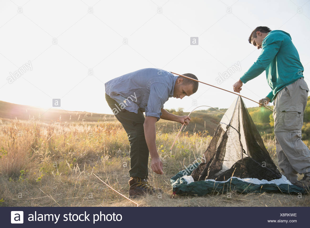 Men inserting tent poles into tent. - Stock Image