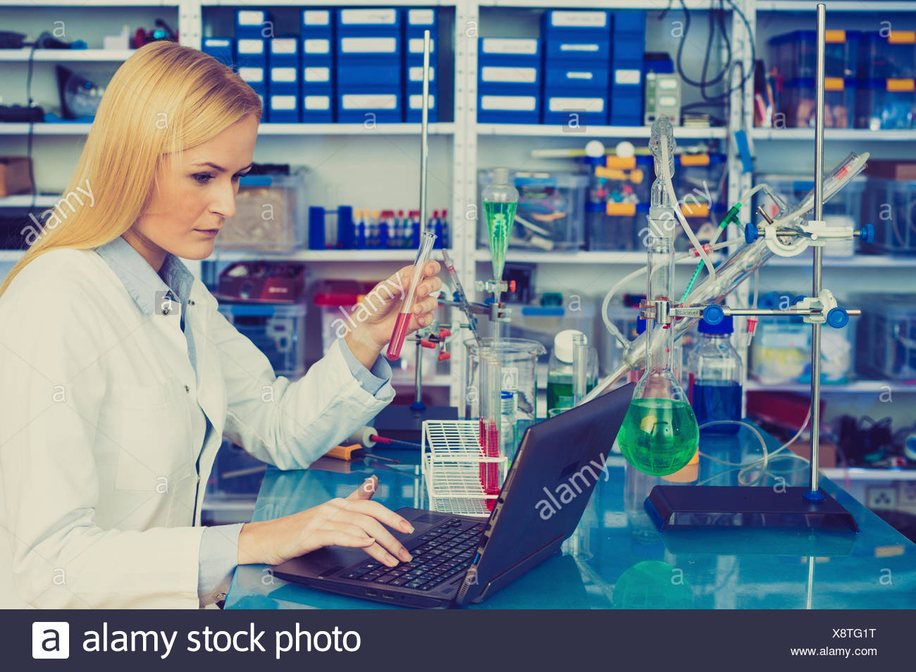 MODEL RELEASED. Female chemist working on a laptop in the laboratory. Stock Photo