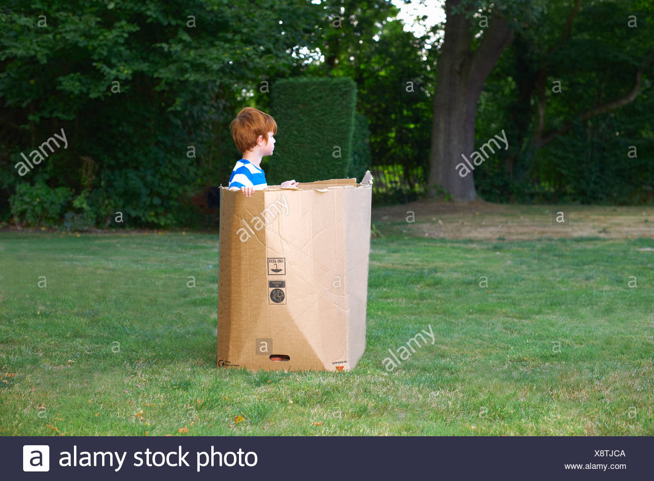 Young boy watching from cardboard box in garden Stock Photo