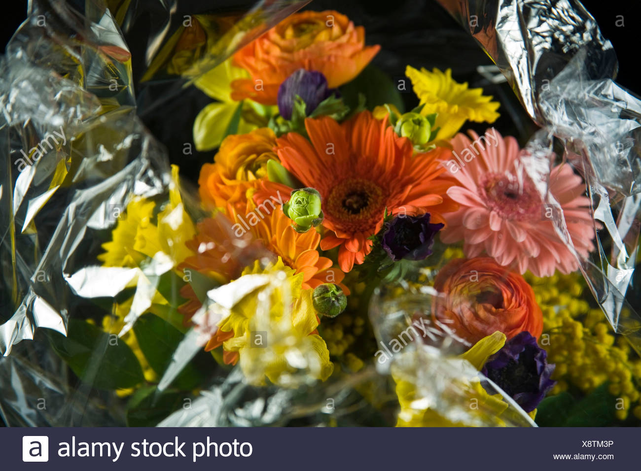 Bouquet of flowers wrapped in cellophane - Stock Image