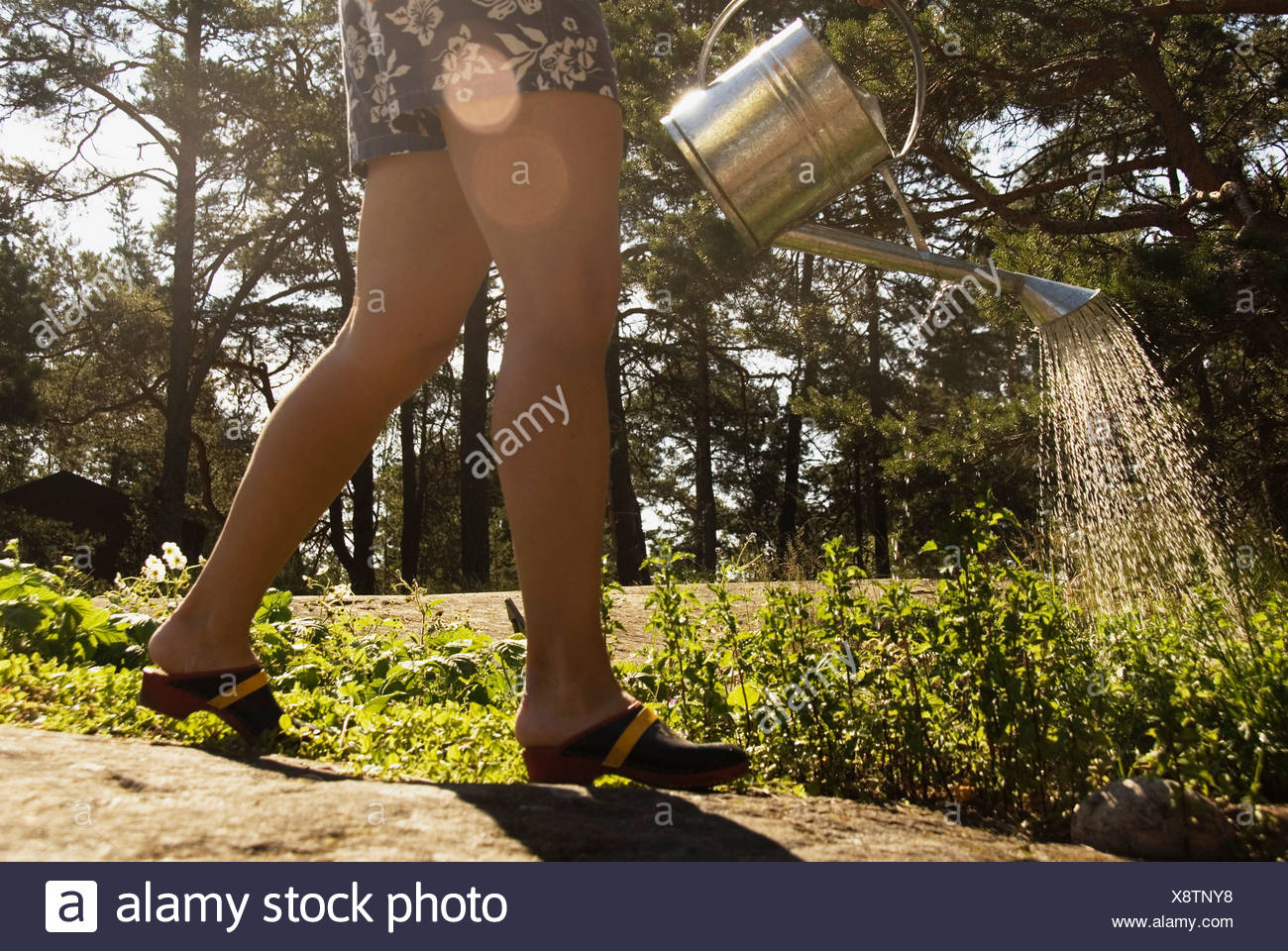 Woman water flowers - Stock Image