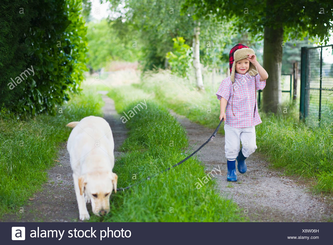 A boy walking his dog - Stock Image