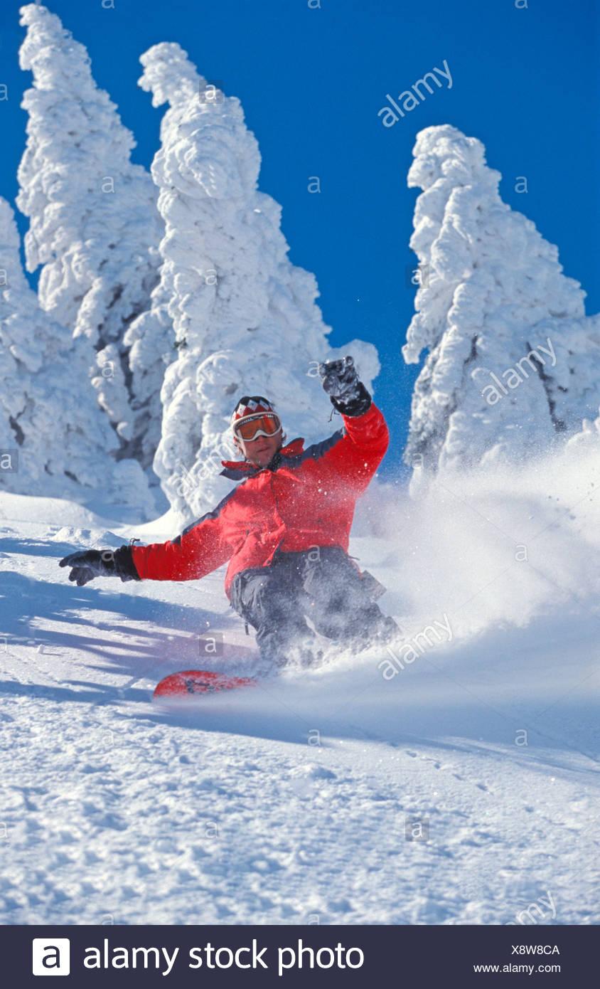 Austria Europe Snowboard Snowboarding Snowboarder Winter