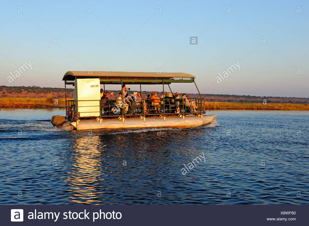 Africa, Botswana, Chobe, National Park, elephant, animal, safari, water, river, tour boat, tourist Stock Photo