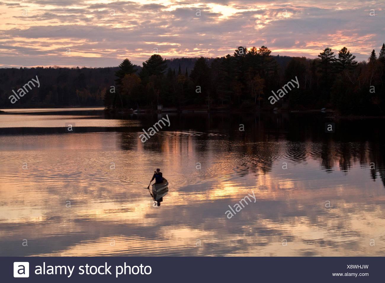 Young man paddles solo canoe on Oxtongue Lake, Muskoka, Ontario. - Stock Image