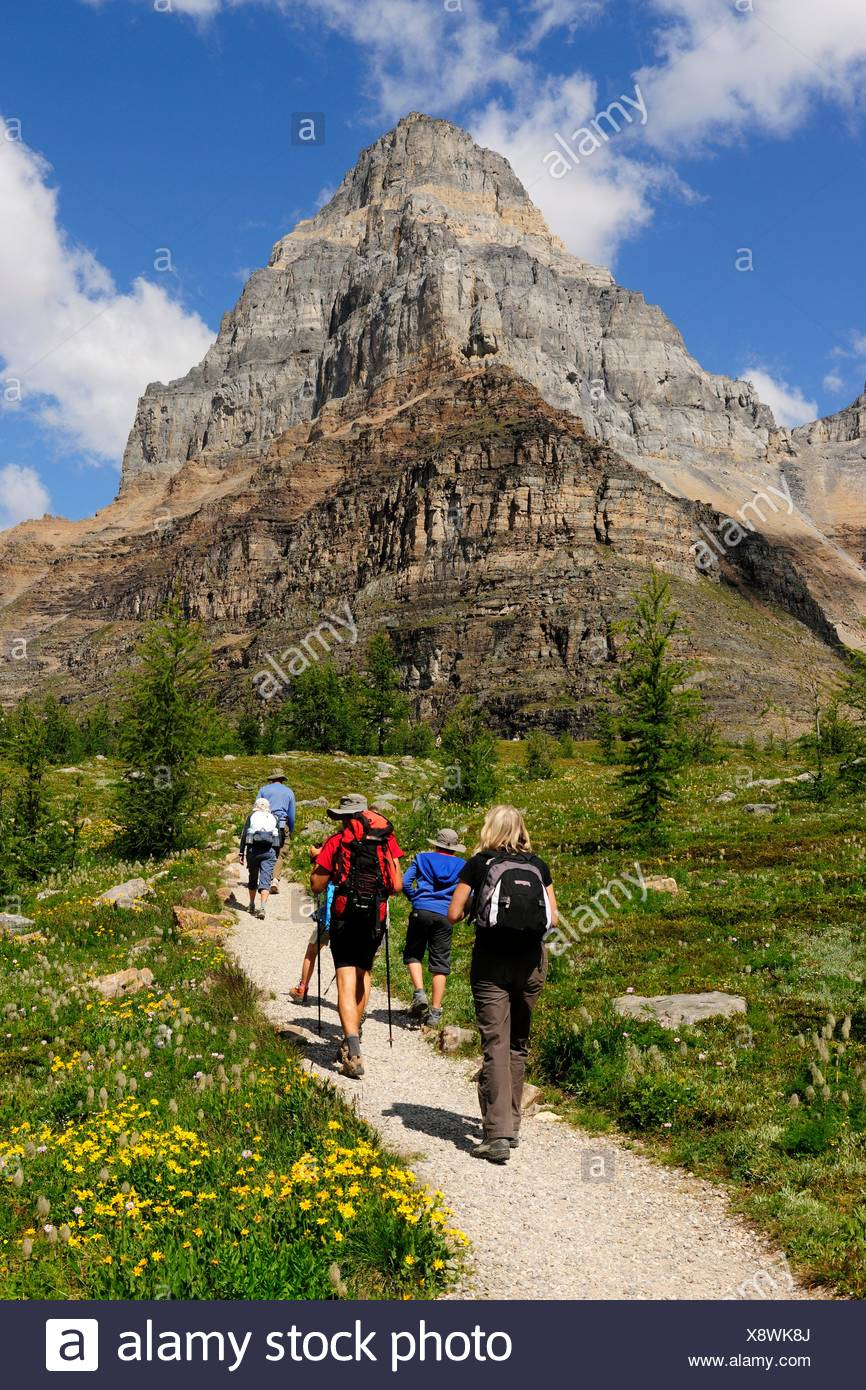 Hiker rambling in the Rocky Mountains, Banff National Park, Alberta Province, Canada - Stock Image