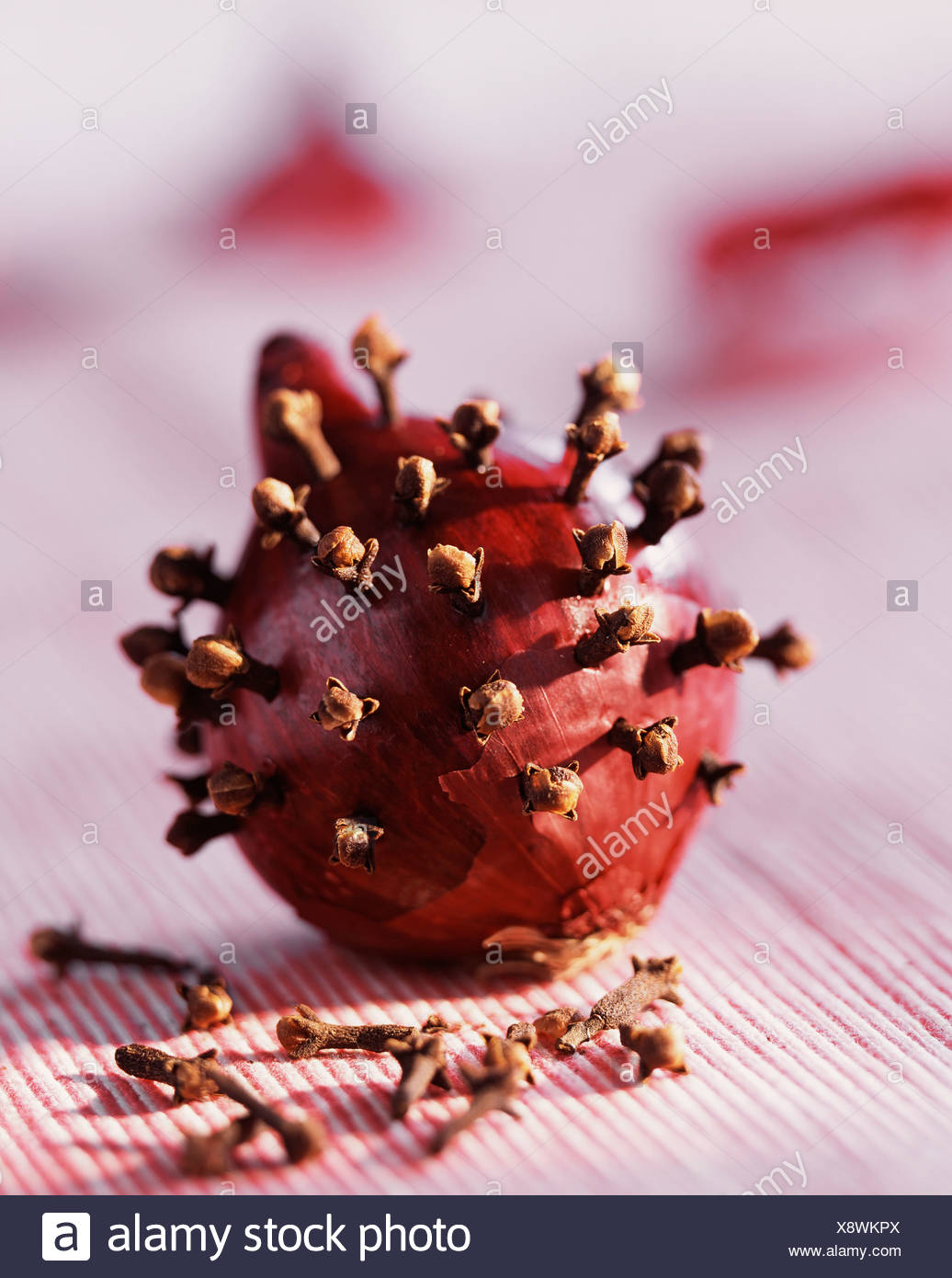 Cloves and Onion - Stock Image