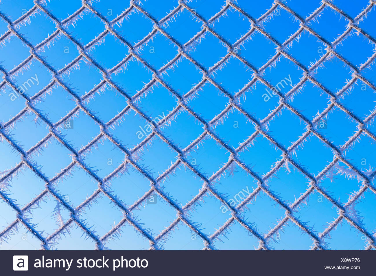 Drahtzaun Stock Photos & Drahtzaun Stock Images - Alamy