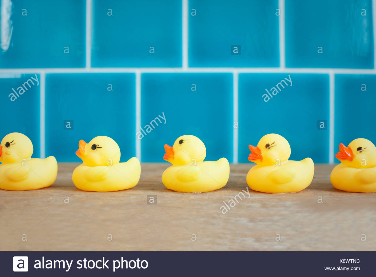 Rubber ducks in a row - Stock Image