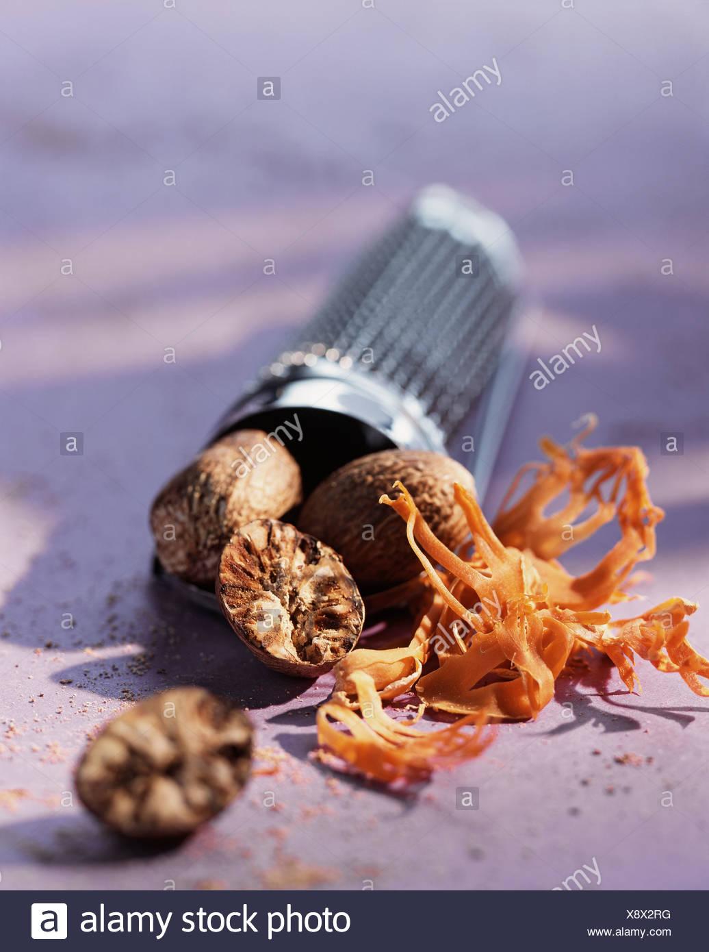 Nutmeg - Stock Image