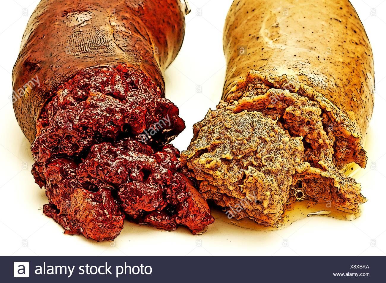 blood sausage and liver-sausage. - Stock Image